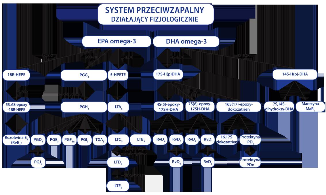 grypa, infekcje, biomarine, biocardine