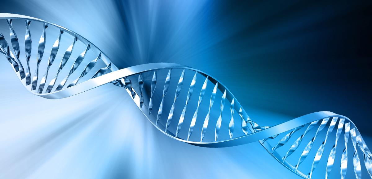 Witamina D3 reguluje aktywność ponad 1000 naszych genów budując odpodstaw zdrowie organizmu.